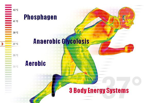 پاورپوینت Energy Systems